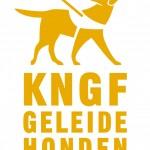 logo KNGF